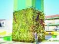 西班牙建成全球首个立方体花园