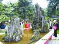 国内首个川派盆景园成都精美亮相